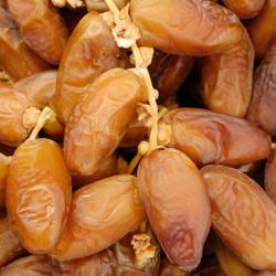 Dattes Deglet Nour d'Algérie
